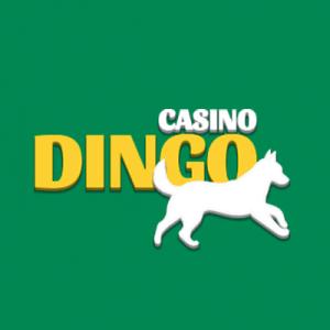 Dingo Casino bonuscode